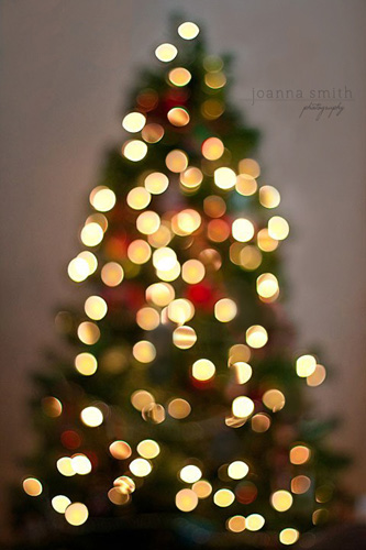 Photographing Christmas Tree Bokeh